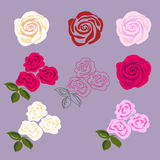 Rose flowers. Set of rose flowers. Flat disign for sticker, tattoo etc Stock Photos