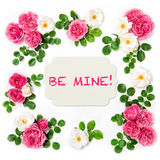 Rose flowers Valentines Day Floral flat lay Royalty Free Stock Photos