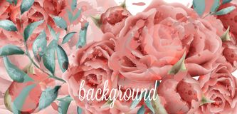 Rose flowers watercolor background Vector. Beautiful vintage pink colors floral decors vector illustration