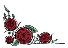 Rose flowers on white background vector illustration royalty free stock photography