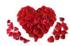 rose form för hjärtapetals royaltyfri foto