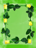 Rose frame 6. Sheet of green paper with yellow roses, love letter background frame vector illustration