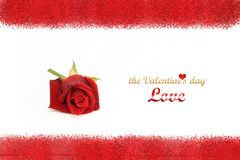 Rose frame. Isolated red rose on white background. Greeting card with the Valentine's day Royalty Free Stock Image