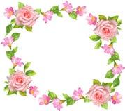 Rose frame. The rose frame for decoration Stock Photo