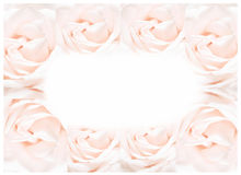 The rose frame, blooming flowers vintage background, pastel and soft card Stock Image