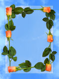 Rose frame love letter blue paper background Royalty Free Stock Photography