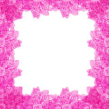 Rose frame. Pink rose Frame on White background Stock Images