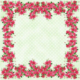 Rose Framed Pastel Polkadots Royalty Free Stock Images