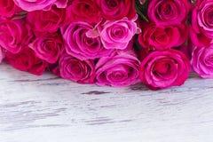 Rose fresche dentellare Fotografia Stock Libera da Diritti