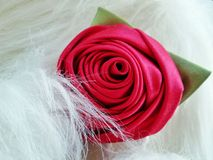 Rose & fur sweet background Stock Photography