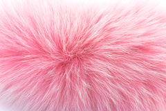 Rose fur on white. Colored rose fur of polar fox isolated on a white background stock photography