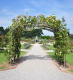 Rose Garden. The state rose garden at werribe Victoria Australia Stock Image