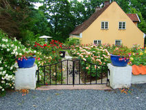 Rose garden. An old house with a garden covered with roses royalty free stock photos