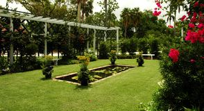 Rose Garden. Fort Meyers,Florida stock photo