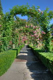 Rose garden arches and path Royalty Free Stock Photography