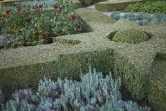 Rose Garden dans Kongens ont image stock