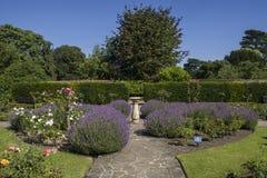 Rose Garden en Abbey Gardens, St Edmunds del entierro Imagen de archivo