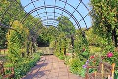 Rose Garden en Hyde Park, Londres Foto de archivo libre de regalías