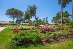 The rose garden `Il Roseto` in Genoa Nervi, inside Genoa Nervi Parks, Italy. royalty free stock photo