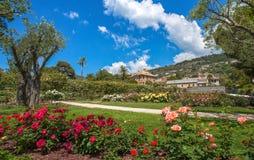 The rose garden `Il Roseto` in Genoa Genova Nervi, inside Genoa Nervi Parks, Italy. The rose garden `Il Roseto` in Genoa Stock Image