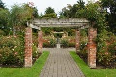 Rose garden,Invercargill Royalty Free Stock Photo
