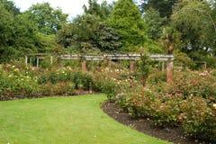 Rose Garden,Invercargill Royalty Free Stock Photos