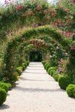 Rose Garden Landscape. In the Summer Stock Images