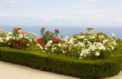 Rose garden near sea Royalty Free Stock Images
