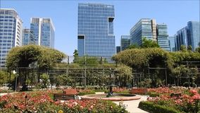 Rose garden at park in Chile. Rose  garden at a park in santiago, Chile stock footage