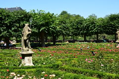 Rose garden of the residence in Bamberg, Germany Royalty Free Stock Photos