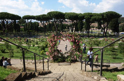 Rose Garden in Rome Royalty-vrije Stock Afbeeldingen