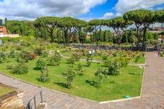 Rose Garden in Rome in de zomer stock fotografie