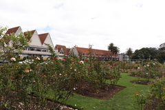 Rose garden with slanted roofs motel stock images