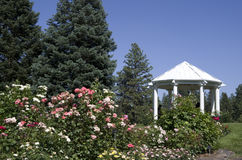 Rose garden Spokane. Rose garden in traditional style with pavilion Royalty Free Stock Photo