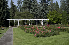 Rose garden Spokane. Rose garden in traditional style with pavilion Stock Image