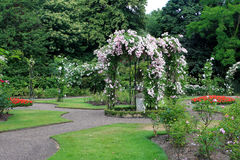 Rose garden at Warwick castle. The Victorian Rose Garden, Warwick castle, England Royalty Free Stock Image