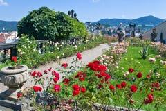 Rose gardens at Decin castle, Czech republic Stock Photography