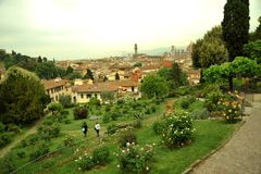 Rose gardens in Florence city , Italy Stock Photos