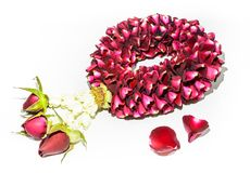 Rose garlands on white background Stock Photos