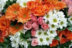 Rose gerbera daisy chrysanthemum Royalty Free Stock Photo