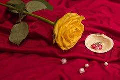 Rose gialle con lle coperture, le perle e l'anello Fotografie Stock