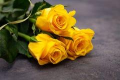 Rose gialle sopra su fondo scuro immagine stock libera da diritti