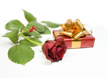 Rose and gift Stock Images