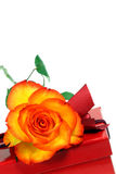 Rose and gift box. Royalty Free Stock Photos