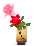 A rose glass. A soft roses glass in valentine day Royalty Free Stock Images