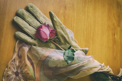 Rose, glove and veil. Top view of a rose lying on an elegant female glove on a wooden table in vintage look Stock Image