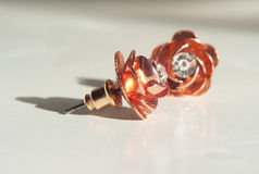 Rose Gold Earrings Royaltyfri Bild