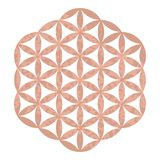 Rose gold foil sacred geometry design Yoga studio logo, metallic tattoo, Decorative ornate Flower of Life, Ornamental pattern for. Greeting cards, invitation Stock Image