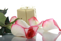 Rose and golden box Royalty Free Stock Photos