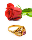 Rose and golden ring Royalty Free Stock Image